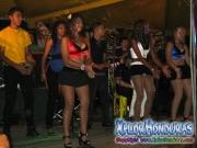 carnaval-de-la-ceiba-2014-barrio-ingles-43