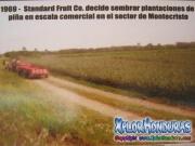 Piñera de Standard Fruit Co. en sector Montecristo