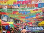 desfile-de-carrozas-carnaval-de-la-ceiba-2015-062