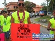 desfile-de-carrozas-carnaval-de-la-ceiba-2015-205