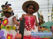 desfile-de-carrozas-carnaval-de-la-ceiba-2015-208