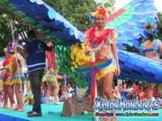 desfile-de-carrozas-carnaval-de-la-ceiba-2015-258