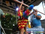 Delicia - Pollo Norteño - Desfile de Carrozas 4 La Ceiba 2014