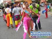 desfile-de-carrozas-carnaval-de-la-ceiba-2015-242