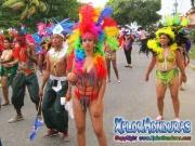 desfile-de-carrozas-carnaval-de-la-ceiba-2015-309