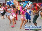 desfile-de-carrozas-carnaval-de-la-ceiba-2015-335