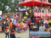 carnaval-de-tela-2016-desfile-de-carrozas-116