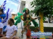 carnaval-de-tela-2016-desfile-de-carrozas-132