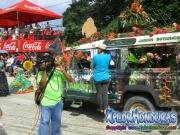 carnaval-de-tela-2016-desfile-de-carrozas-046