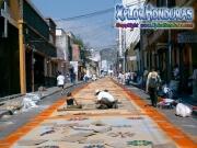 Elaboracion de alfombras Tegucigalpa