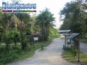 Jardin Botanico Lancetilla Honduras