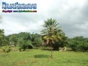 Paisaje de Tela Honduras