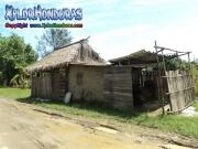 Tela Atlantida Honduras Paisaje
