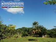 Tela Honduras pictures