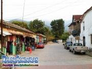 Bazar Emy