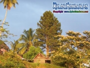 moskitia honduras ahuasbila rio coco rio segovia mosquitia