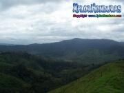 mosquitia eco natura fauna La Reserva de biosfera de rio platano honduras moskitia