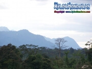 mosquitia honduras La Reserva de la Biosfera de Rio Platano moskitia