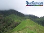 mosquitia La Reserva de biosfera de rio platano honduras eco natura fauna moskitia