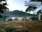 mosquitia La Reserva de la Biosfera de Rio Platano plan grande honduras moskitia
