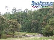 mosquitia turismo tourism La Reserva de biosfera de rio platano honduras moskitia