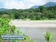 parque nacional pico bonito, rio cangrejal, zona turistica la cuenca