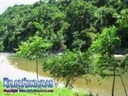 parque nacional pico bonito, rio cangrejal, vista desde el camino