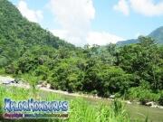 parque nacional pico bonito, rio cangrejal, paisaje del rio y montañas