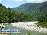 parque nacional pico bonito, rio cangrejal, vista sobre el rio