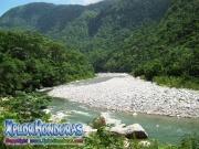 parque nacional pico bonito, rio cangrejal, naturaleza bella y rio
