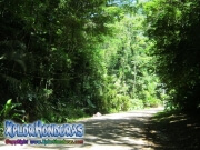 parque nacional pico bonito, rio cangrejal, camino a parque nacional nombre de dios