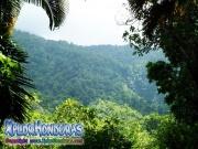 parque nacional pico bonito, rio cangrejal, vista a cascada el bejuco