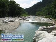 parque nacional pico bonito, rio cangrejal, paisaje del rio en hotel jungle river lodge