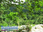 parque nacional pico bonito, rio cangrejal, cordillera nombre de dios