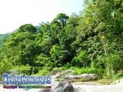 parque nacional pico bonito, rio cangrejal, naturaleza en la cuenca del cangrejal