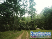 Naturaleza Rawacala Ecopark Omoa
