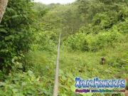 Canopy Rawacala Ecopark