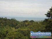 Vista Playas de Omoa Rawacala Ecopark