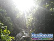 Bosque Rawacala Ecopark Omoa Cortes