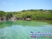 Roatan, Islas de la Bahia, Honduras, calidas aquas cristalinas