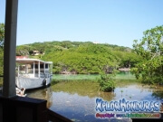 Roatan, Islas de la Bahia, Honduras, paisaje del Creek