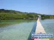 Roatan, Islas de la Bahia, Honduras, poli cay