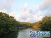 Roatan, Islas de la Bahia, Honduras, the creek