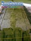 Escalinata Jeroglificos Copan Ruinas Honduras