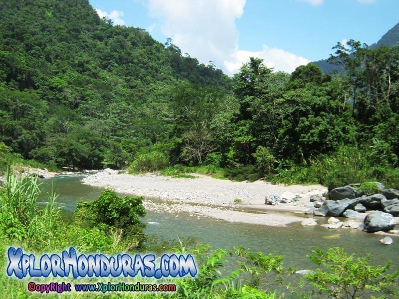 Montaas de Honduras  Grupos Montaosos de Honduras