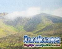 Canto a Honduras Alfonso Guillen Zelaya