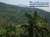 Cordillera Central Honduras
