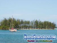 fotos Roatan, Islas de la Bahia, Honduras