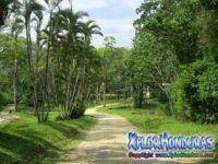 Jardin Botanico Lancetilla Tela Honduras