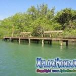 Refugio de Vida Silvestre Laguna de Guaimoreto Trujillo Honduras